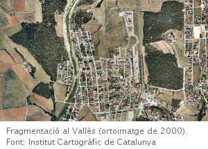 Fragmentació del territori i biodiversitat