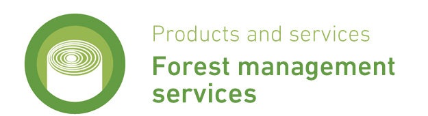 ENG - Serv Forest