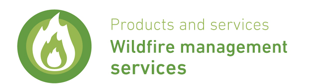 ENG - Serv Wildfires