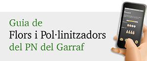 Guia de Flors i Pol·linitzadors del Garraf