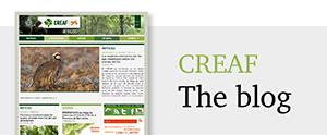CREAF blog