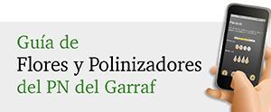 Guía de Flores y Polinizadores del Garraf