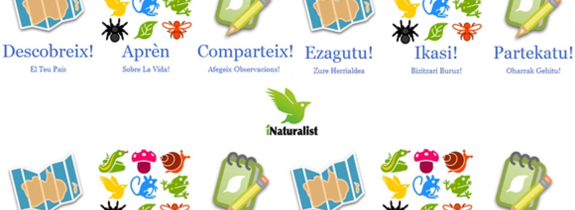 iNaturalist Espanya