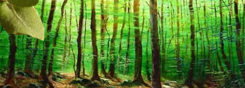 Atles de la biodiversitat forestal.