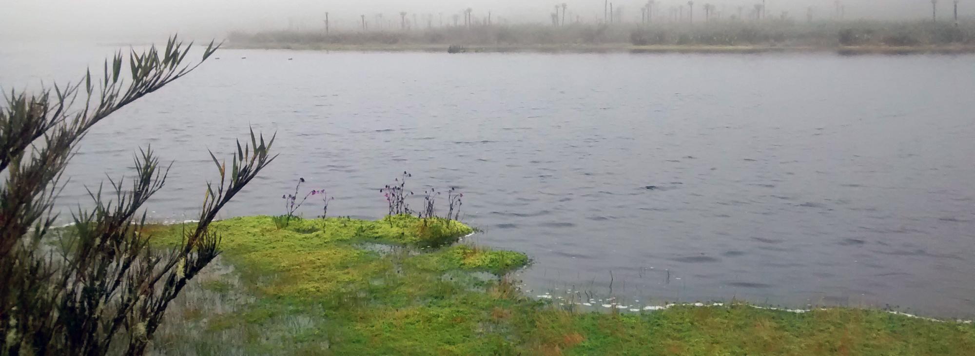Laguna de Buitrago en el páramo colombiano