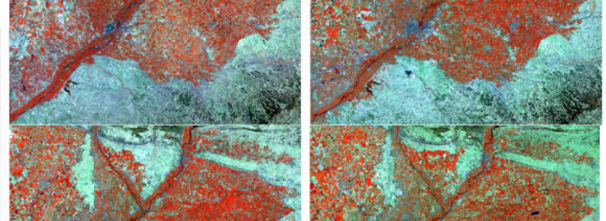 Anàlisi espai-temporal de les cobertes del sòl