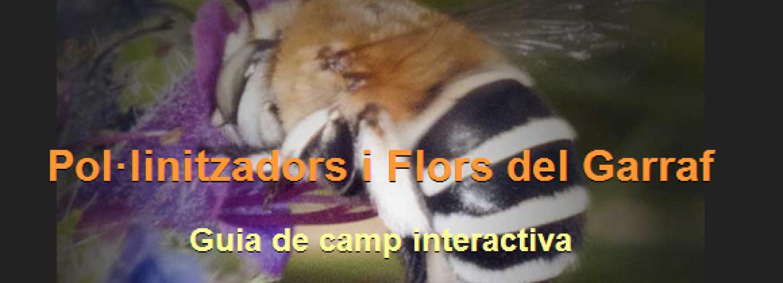 Pol·linitzadors i Flors del Garraf